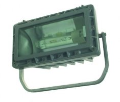 پرژکتور ضدانفجار Explosion Proof floodlight