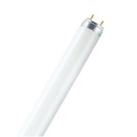 لامپ 36 وات فلورا اسرام