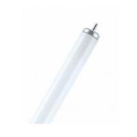 لامپ ضدانفجار 20 وات نور